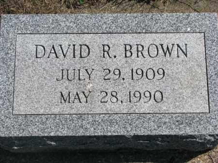 BROWN, DAVID R. - Clay County, South Dakota   DAVID R. BROWN - South Dakota Gravestone Photos