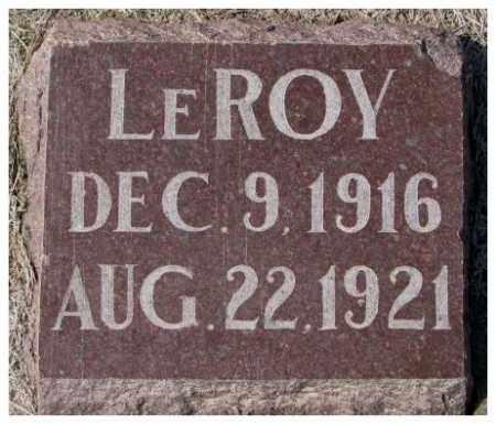 BRUYER, LEROY - Clay County, South Dakota | LEROY BRUYER - South Dakota Gravestone Photos