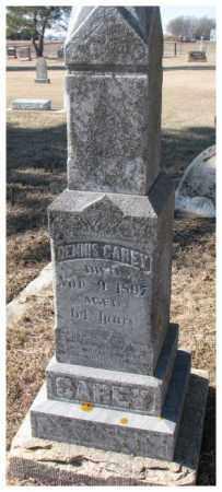 CAREY, DENNIS - Clay County, South Dakota | DENNIS CAREY - South Dakota Gravestone Photos