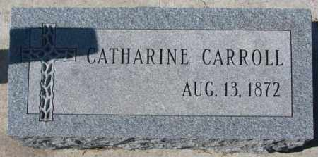 CARROLL, CATHARINE - Clay County, South Dakota | CATHARINE CARROLL - South Dakota Gravestone Photos