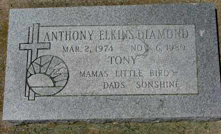 DIAMOND, ANTHONY ELKINS - Clay County, South Dakota   ANTHONY ELKINS DIAMOND - South Dakota Gravestone Photos