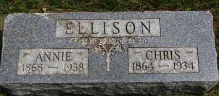 ELLISON, ANNIE - Clay County, South Dakota | ANNIE ELLISON - South Dakota Gravestone Photos
