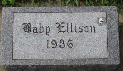 ELLISON, BABY - Clay County, South Dakota | BABY ELLISON - South Dakota Gravestone Photos