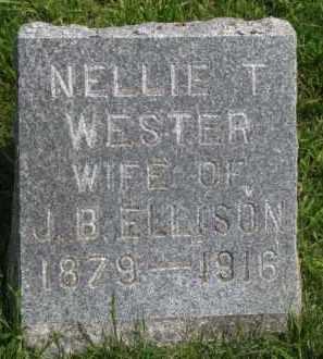 ELLISON, NELLIE T. - Clay County, South Dakota | NELLIE T. ELLISON - South Dakota Gravestone Photos
