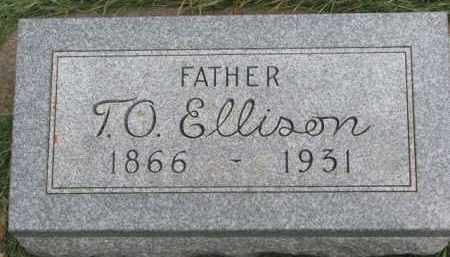 ELLISON, T.O. - Clay County, South Dakota | T.O. ELLISON - South Dakota Gravestone Photos