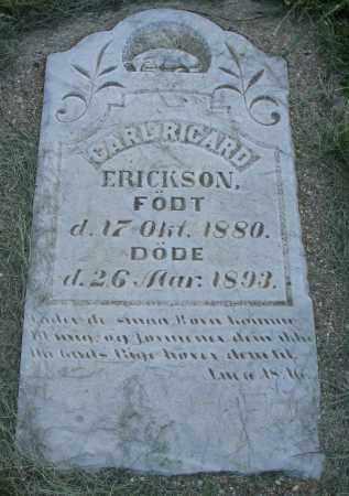 ERICKSON, CARL RICARD - Clay County, South Dakota   CARL RICARD ERICKSON - South Dakota Gravestone Photos