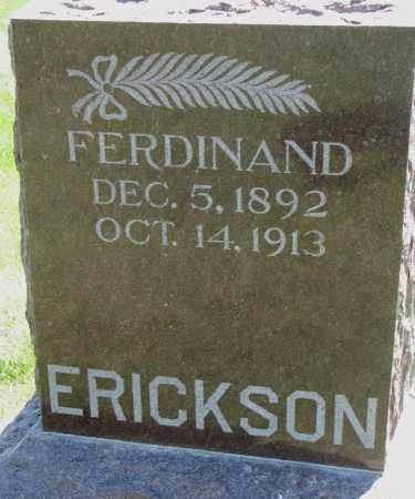 ERICKSON, FERDINAND - Clay County, South Dakota | FERDINAND ERICKSON - South Dakota Gravestone Photos