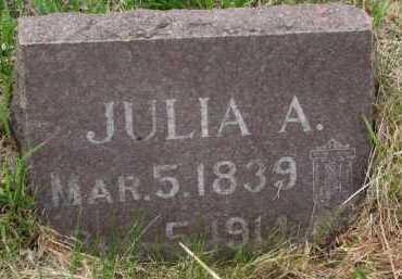 FRIER, JULIA A. - Clay County, South Dakota | JULIA A. FRIER - South Dakota Gravestone Photos