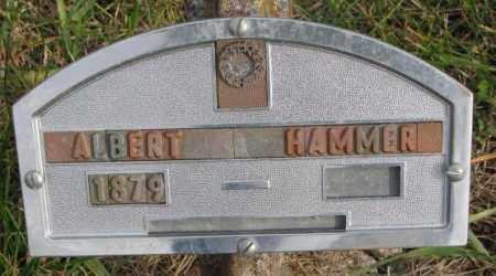 HAMMER, ALBERT - Clay County, South Dakota | ALBERT HAMMER - South Dakota Gravestone Photos