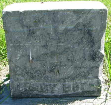 HOLMES, ALBERT FRANCES - Clay County, South Dakota   ALBERT FRANCES HOLMES - South Dakota Gravestone Photos