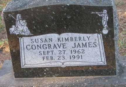 JAMES, SUSAN KIMBERLY - Clay County, South Dakota | SUSAN KIMBERLY JAMES - South Dakota Gravestone Photos