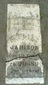 JAMISON, CECIL - Clay County, South Dakota | CECIL JAMISON - South Dakota Gravestone Photos