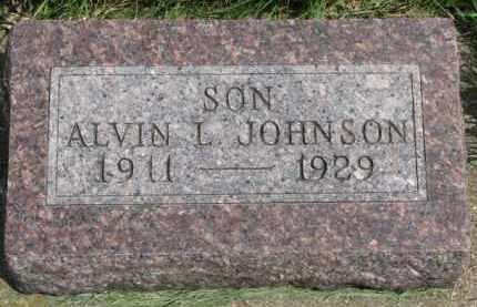 JOHNSON, ALVIN L. - Clay County, South Dakota | ALVIN L. JOHNSON - South Dakota Gravestone Photos