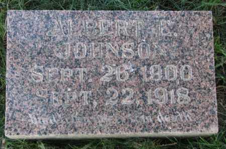 JOHNSON, ALBERT E. - Clay County, South Dakota | ALBERT E. JOHNSON - South Dakota Gravestone Photos