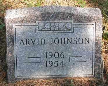 JOHNSON, ARVID - Clay County, South Dakota | ARVID JOHNSON - South Dakota Gravestone Photos