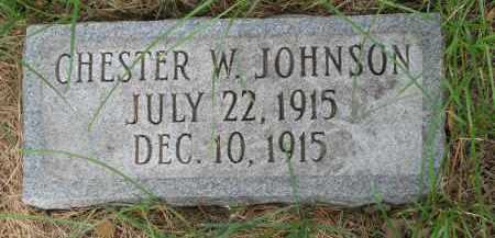 JOHNSON, CHESTER W. - Clay County, South Dakota | CHESTER W. JOHNSON - South Dakota Gravestone Photos