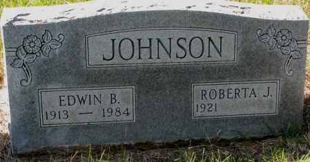 JOHNSON, EDWIN B. - Clay County, South Dakota | EDWIN B. JOHNSON - South Dakota Gravestone Photos