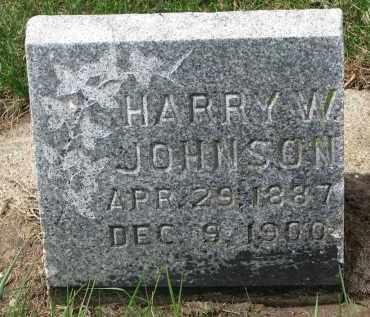 JOHNSON, HARRY W. - Clay County, South Dakota | HARRY W. JOHNSON - South Dakota Gravestone Photos