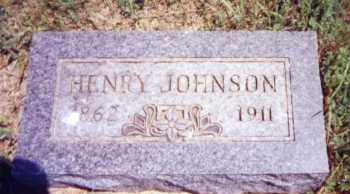 JOHNSON, HENRY - Clay County, South Dakota | HENRY JOHNSON - South Dakota Gravestone Photos