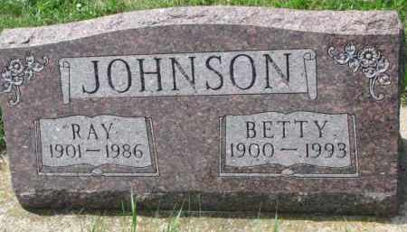 JOHNSON, RAY - Clay County, South Dakota | RAY JOHNSON - South Dakota Gravestone Photos