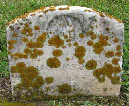 JOHNSON, UNKNOWN - Clay County, South Dakota   UNKNOWN JOHNSON - South Dakota Gravestone Photos