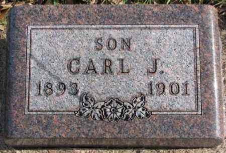 LARSON, CARL J. - Clay County, South Dakota | CARL J. LARSON - South Dakota Gravestone Photos