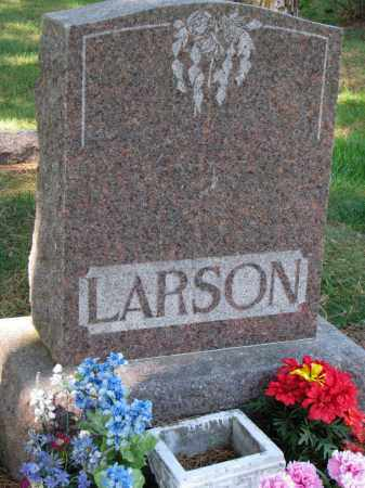 LARSON, FAMILY STONE - Clay County, South Dakota | FAMILY STONE LARSON - South Dakota Gravestone Photos