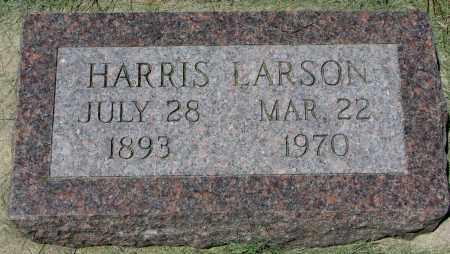 LARSON, HARRIS - Clay County, South Dakota | HARRIS LARSON - South Dakota Gravestone Photos