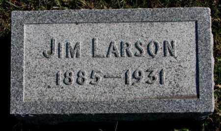 LARSON, JIM - Clay County, South Dakota   JIM LARSON - South Dakota Gravestone Photos