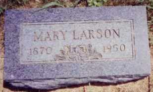 LARSON, MARY - Clay County, South Dakota   MARY LARSON - South Dakota Gravestone Photos