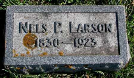 LARSON, NELS P. - Clay County, South Dakota | NELS P. LARSON - South Dakota Gravestone Photos