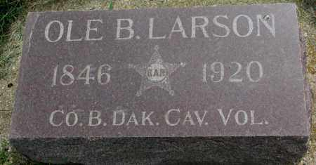 LARSON, OLE B. - Clay County, South Dakota | OLE B. LARSON - South Dakota Gravestone Photos