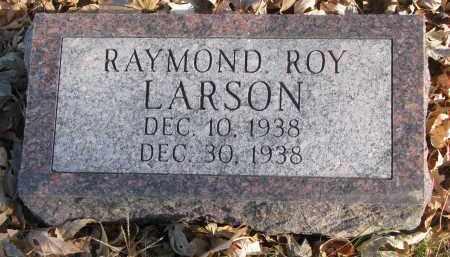 LARSON, RAYMOND ROY - Clay County, South Dakota | RAYMOND ROY LARSON - South Dakota Gravestone Photos