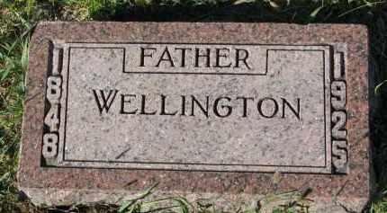LOVEJOY, WELLINGTON - Clay County, South Dakota   WELLINGTON LOVEJOY - South Dakota Gravestone Photos
