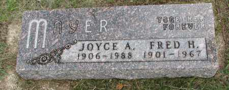 MAYER, JOYCE A. - Clay County, South Dakota | JOYCE A. MAYER - South Dakota Gravestone Photos