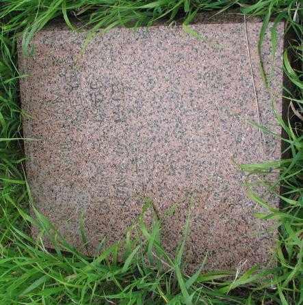 MEYER, WILLIAM - Clay County, South Dakota | WILLIAM MEYER - South Dakota Gravestone Photos