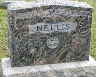 NELLIS, FAMILY STONE - Clay County, South Dakota | FAMILY STONE NELLIS - South Dakota Gravestone Photos