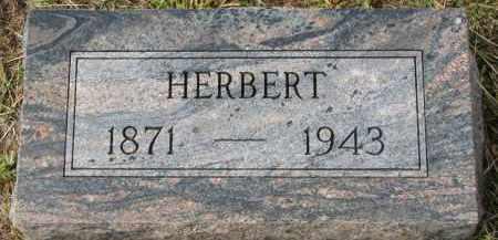 NELLIS, HERBERT - Clay County, South Dakota | HERBERT NELLIS - South Dakota Gravestone Photos