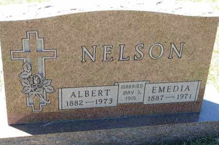 NELSON, EMEDIA - Clay County, South Dakota | EMEDIA NELSON - South Dakota Gravestone Photos