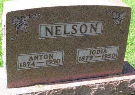NELSON, ANTON - Clay County, South Dakota | ANTON NELSON - South Dakota Gravestone Photos