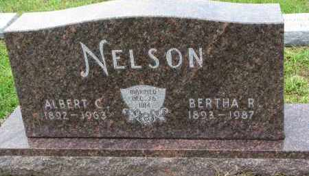 NELSON, ALBERT C. - Clay County, South Dakota   ALBERT C. NELSON - South Dakota Gravestone Photos