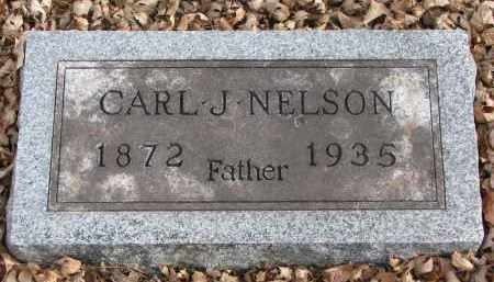 NELSON, CARL J. - Clay County, South Dakota | CARL J. NELSON - South Dakota Gravestone Photos