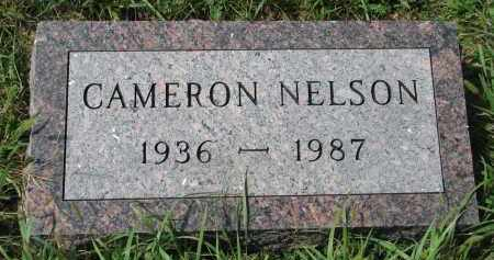 NELSON, CAMERON - Clay County, South Dakota | CAMERON NELSON - South Dakota Gravestone Photos