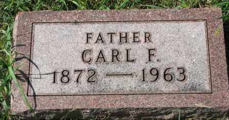 NELSON, CARL F. - Clay County, South Dakota | CARL F. NELSON - South Dakota Gravestone Photos