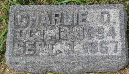 NELSON, CHARLIE O. - Clay County, South Dakota | CHARLIE O. NELSON - South Dakota Gravestone Photos