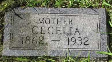 NELSON, CECELIA - Clay County, South Dakota | CECELIA NELSON - South Dakota Gravestone Photos