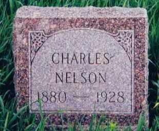 "NELSON, CHARLES ""CHARLIE"" - Clay County, South Dakota 