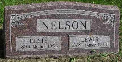 NELSON, LEWIS - Clay County, South Dakota | LEWIS NELSON - South Dakota Gravestone Photos