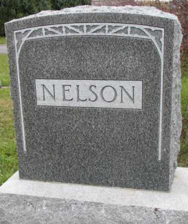 NELSON, FAMILY STONE - Clay County, South Dakota   FAMILY STONE NELSON - South Dakota Gravestone Photos