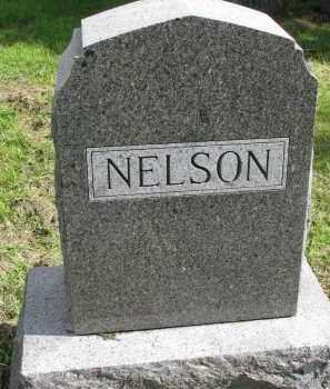 NELSON, FAMILY STONE - Clay County, South Dakota | FAMILY STONE NELSON - South Dakota Gravestone Photos